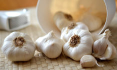 Jednoduchý trik jak se zbavit zápachu po česneku